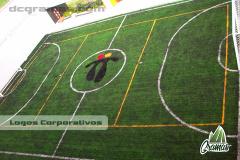 Diseño de logos para campos deportivos